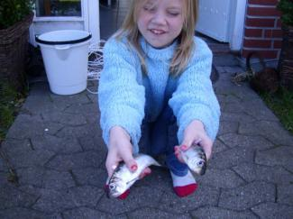 Den stolte fisker. The proud angler. Cecilie with her first herrings.