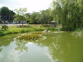 Very nice village pond at Grundfoer about 15 miles from where we live.