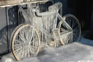 everton cykel 24